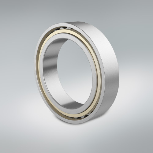 Cylindrical Roller Bearing - Large gear