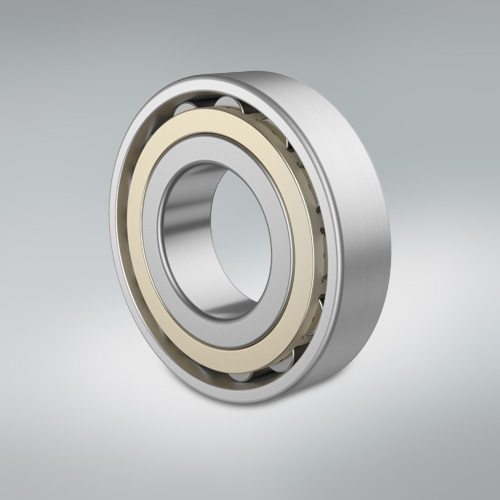 Cylindrical Roller Bearing - Small gear